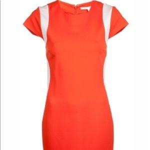Beautiful Diane von Furstenberg Sheath Dress